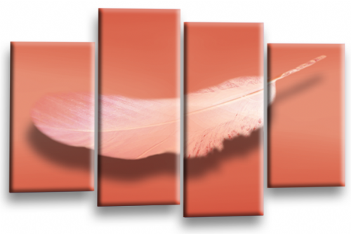 Modern Abstract Wall Art Picture Feather Love Print Orange White